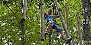 Image - Rope Course Aerial Park